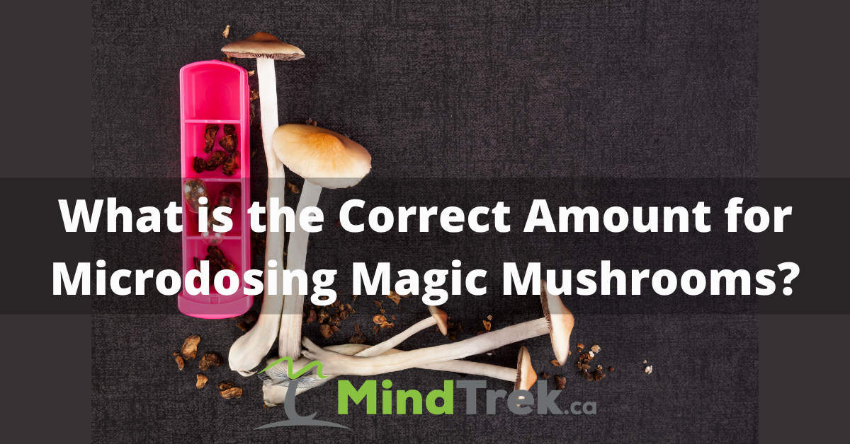 Correct Amount for Microdosing Magic Mushrooms
