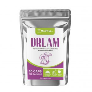 Dream - Mindtrek.ca
